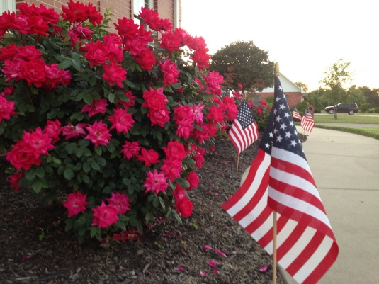 The intent of this shot was to get the flag with the roses. In The Background:  Three more of the flags down the sidewalk.